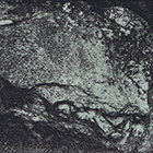 grüner Andeer, 2012, Fototiefdruck, 15.8 x 19 cm (Plattengrösse)