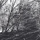 Hügeli, 2012, Fototiefdruck, 11.7 x 24.5 cm (Plattengrösse)