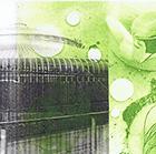 Glasgow, 2014, Chine collé, Fototiefdruck, 11.5 x 27.5 cm (Plattengrösse)